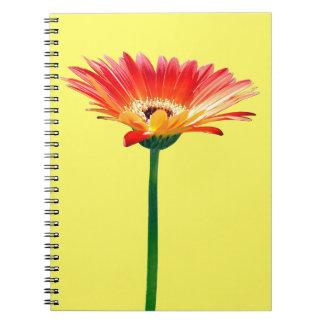 Orange and Yellow Gerbera Daisy Spiral Notebooks