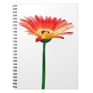 Orange and Yellow Gerbera Daisy Notebook