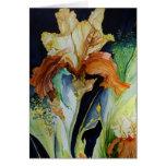 Orange and Yellow Iris Card