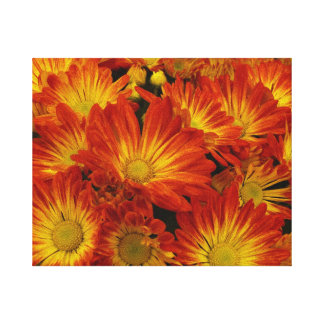 Orange and yellow Mums. Canvas Print