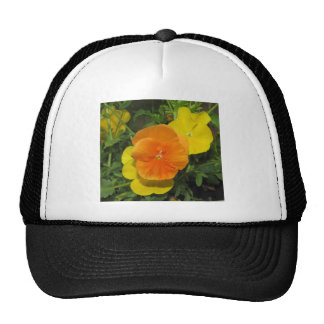 Orange and yellow pansies pansy trucker hat