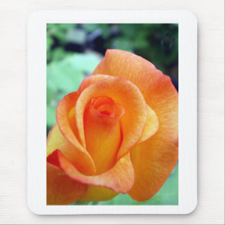 Orange and Yellow Rosebud Mouse Pad