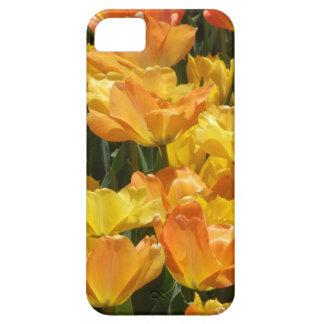 Orange and Yellow Tulips iPhone 5 Cases