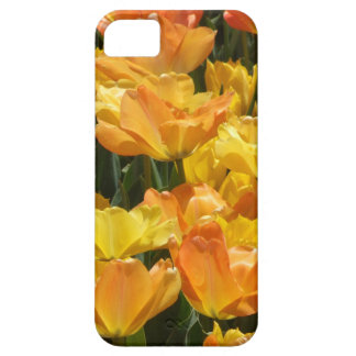 Orange and Yellow Tulips iPhone SE/5/5s Case