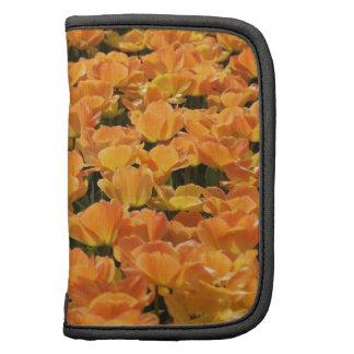 Orange and Yellow Tulips Planner