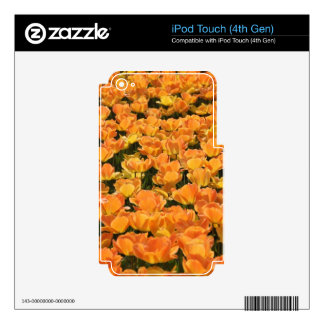 Orange and Yellow Tulips iPod Touch 4G Skin