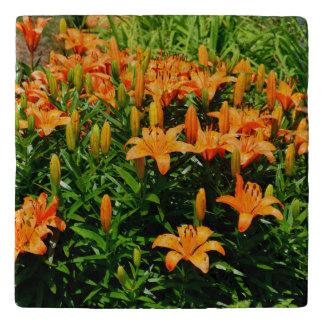 Orange Asian Lillies Trivet