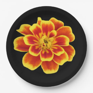 Orange Autumn Flower Rustic Fall Wedding Floral Paper Plate