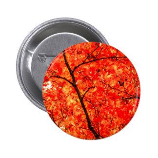 Orange Autumn Leaves Pinback Button