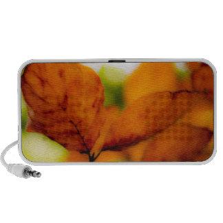 Orange autumn leaves speaker
