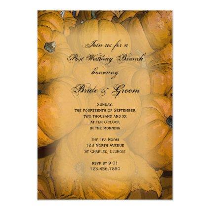 "Orange Autumn Pumpkins Post Wedding Brunch Invitation 5"" X 7"" Invitation Card"