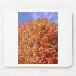 Orange Autumn Trees Mouse Pad
