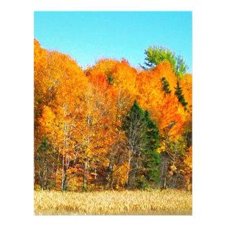 Orange Autumn Trees Newfoundland Canada Photo Art Letterhead