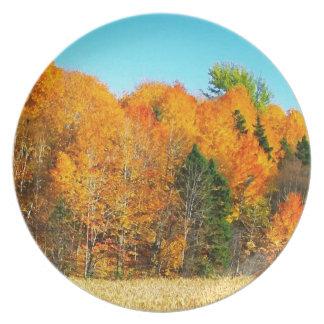 Orange Autumn Trees Newfoundland Canada Photo Art Plates