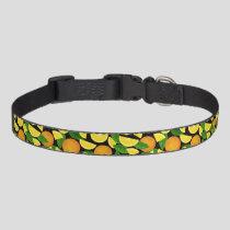 Orange Background Pet Collar