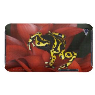 Orange banded dart frog  Dendrobates leucomelas Barely There iPod Cover