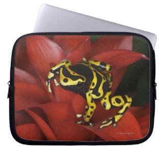 Orange banded dart frog  Dendrobates leucomelas Laptop Sleeve