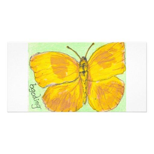 Orange Barred Giant Sulphur Butterfly Custom Photo Card