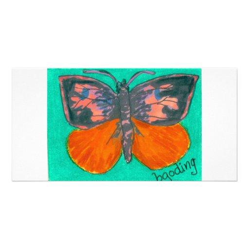 Orange Barred Giant Sulphur Photo Card