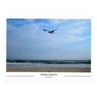 Orange Beach Alabama Postcard