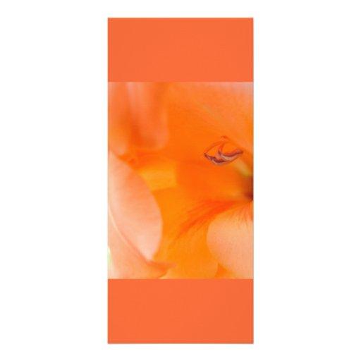 Orange Bell Flowers close-up photography digital Full Color Rack Card