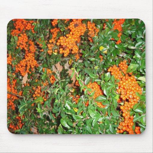 Orange Berries Mouse Pad