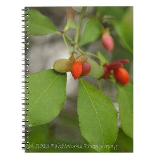 Orange Berries Spiral Notebooks