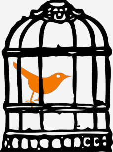 Image result for images orange bird in a cage