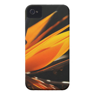 Orange Bird of Paradise Strelitzia iPhone 4 Case