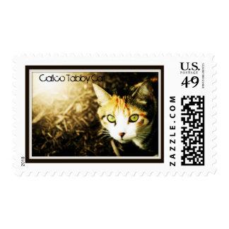 Orange & Black Calico Striped Tabby Cat Postage