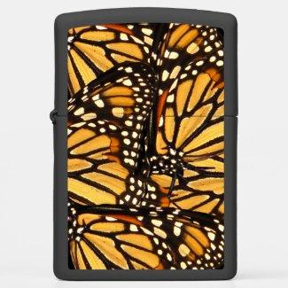 Orange Black Yellow Monarch Butterfly