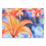 Orange Bloom Happiness ~ Greeting Card