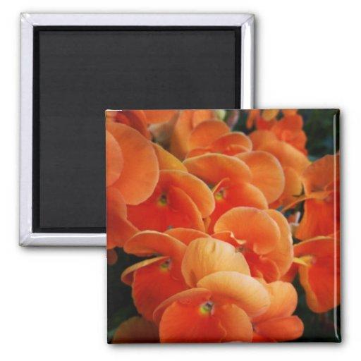 Orange Blooms Refrigerator Magnet