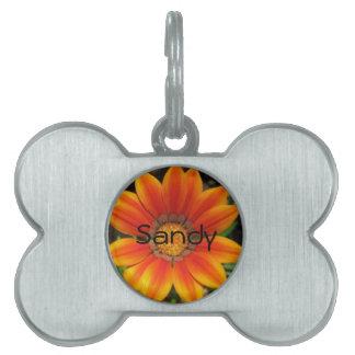 Orange Blooms Pet ID Tag
