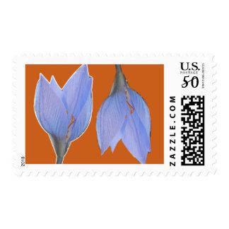 Orange & Blue Flower Postage