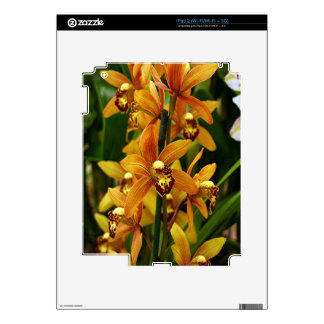 Orange brown orchid flowers in bloom skins for the iPad 2