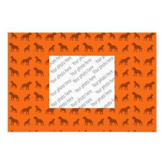 Orange bulldog pattern photo print