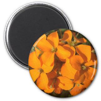 Orange Burst Magnet