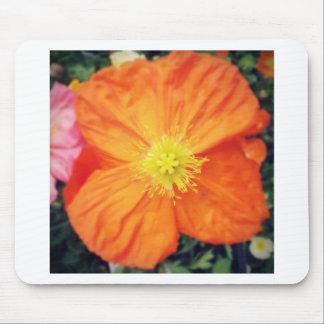 Orange Burst Mouse Pad