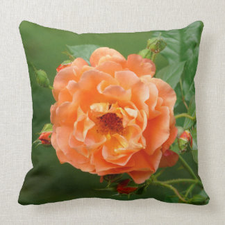 orange bush rose with buds, throw pillow