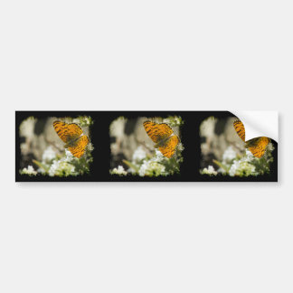 Orange Butterfly Bumper Sticker