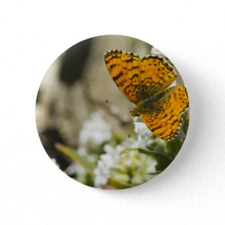 Orange Butterfly Buttons