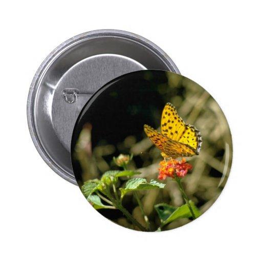 Orange Butterfly flowers Button