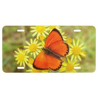 Orange Butterfly License Plate