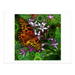 Orange Butterfly Mosaic Postcard
