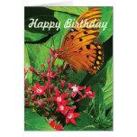 Orange Butterfly on Kalanchoe - Birthday Card