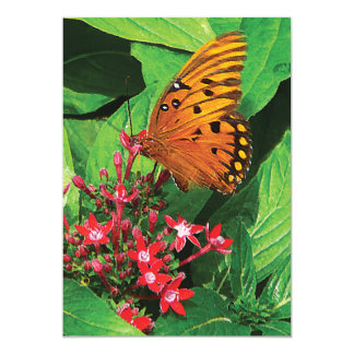Orange Butterfly on Kalanchoe 5x7 Paper Invitation Card