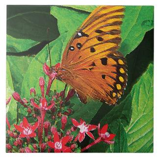 Orange Butterfly on Kalanchoe Tile