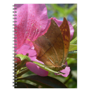 Orange Butterfly on Pink, Real Photo Up Close Notebook