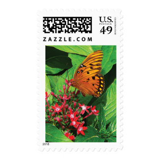 Orange Butterfly on Red Kalanchoe Stamps